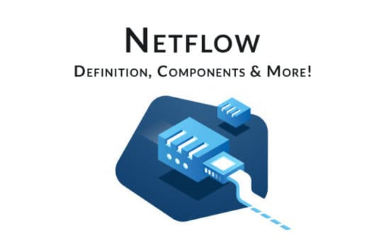 netflow - Definition, Collectors, Analzyers, and More!